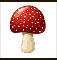 cartoon coloured mushroom isolated on white vector image vector image