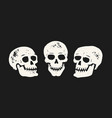grunge skull set skeleton symbol vector image