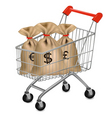 shopping cart with sacks vector image
