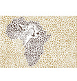 Background of the African cheetah vector image vector image