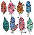 Big set of colorful feathers vector image