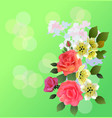 spring bouquet of flowers vector image vector image