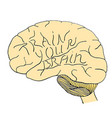 train your brain hand drawn vector image vector image