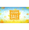 Autumn sale web banner vector image vector image