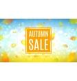 autumn sale web banner vector image vector image