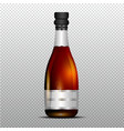 champagne bottle with silver ribbon vector image vector image