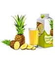 Pineapple juice set vector image vector image