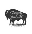 territory of buffaloes vector image vector image