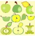 Apples collection vector image