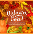autumn season harvest holiday poster vector image vector image