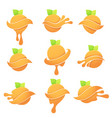collection of bright citrus symbols with green vector image vector image