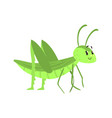 cute cartoon green grasshopper character vector image