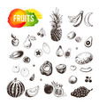 hand drawn fruits and berries set icons vector image vector image