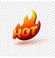 hot fire sign for banner sale restaurant menu vector image vector image