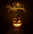Jack o Lantern Dark Scary Cool vector image vector image