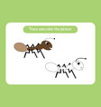 little ant trace and color picture vector image vector image
