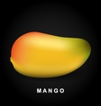 Mango fruit isolated on black background vector image vector image