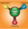 stp marketing diagram - water tap design vector image vector image