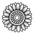 sunflower flower black and white vector image vector image