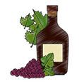 wine bottle and grapes cluster and leafs vector image vector image