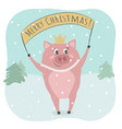 a cute pig and merry christmas text vector image vector image