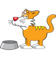 Cartoon Cat with a Food Dish vector image vector image