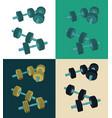 color dumbbells set vector image vector image