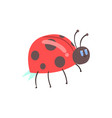 cute cartoon red ladybug character vector image
