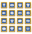 detailed flower icons set blue square vector image