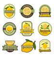 lemon labels retro badges for cold juice drinks vector image