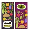 Natural vegetable vertical flyers set vector image vector image