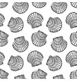 shells vector image