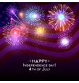 USA independence day poster with fireworks vector image