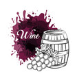 wine house design vector image