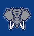 elephant logotype of college sport team vector image vector image