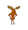 moose standing hands akimbo cartoon vector image vector image