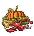 poster with set vegetables cucumbers garlic vector image vector image