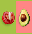 avocado and tomato vector image vector image