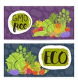 Eco farm food horizontal flyers set vector image vector image