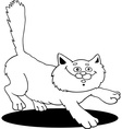 fluffy cat for coloring vector image vector image