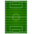 Football field with green lawn vector image