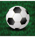 football on a grass background vector image