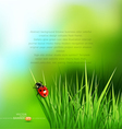 Green grass and ladybug vector | Price: 1 Credit (USD $1)