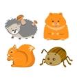 Cute Animal Squrrel Hedgehog Hamster Beetle vector image