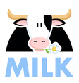 Funny cow holding a daisy flower in his mouth Vec vector image vector image