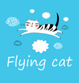 funny flying cat lovers vector image vector image
