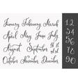 lettering months names set vector image