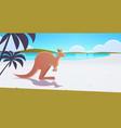 kangaroo jumping on pristine australian beach wild