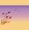 leaves of grass dragonflies and sunrise sky vector image vector image
