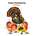 thanksgiving day card turkey and pumpkins vector image vector image